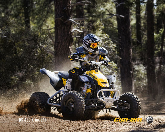 2011 Can-Am DS 450 X MX