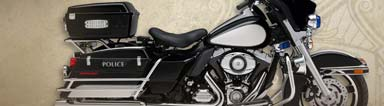 2011 Harley-Davidson Special Editions