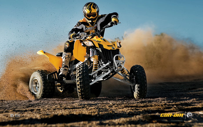 2012 Can-Am Outlander DS 450